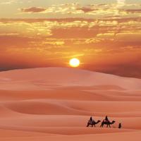 撒哈拉沙漠图片大全