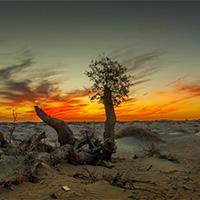 沙漠图片唯美黄昏风景速写