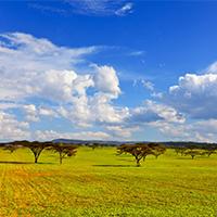 蓝天白云风景辽阔的草原图片