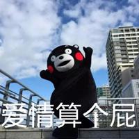 可爱熊唯美带字qq搞笑头像