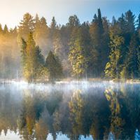 秋天的树木迷雾湖泊摄影图片