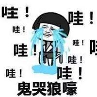 微信斗图哈士奇表情图片