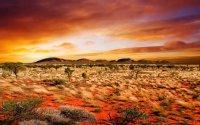 荒凉的沙漠戈壁风光图