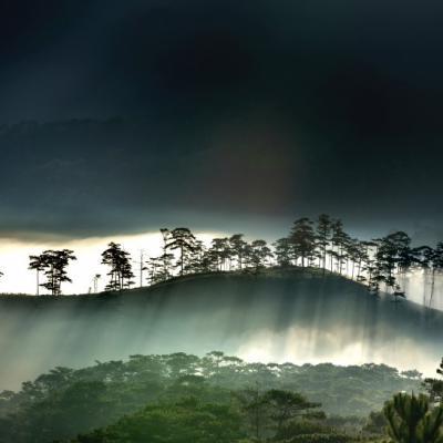 绿色山水微信头像唯美风景图片