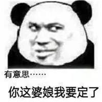 暴走脸部表情素材之熊猫人斗图