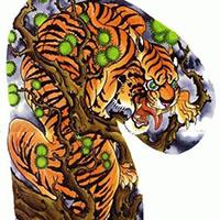 经典霸气半甲纹身老虎图案
