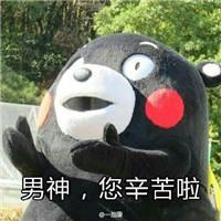 白色熊本熊打出租车表情包